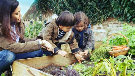 Children Knowledge children pitiful knowledge of where food comes from naturalnews