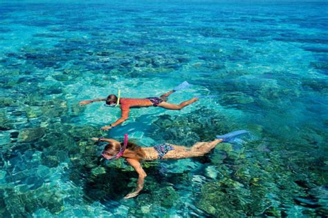 dive gili islands gili islands dive trip lombok network holidays