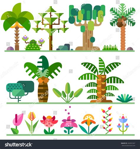 different types of tropical plants trees flowers tropical plants different types trees flowers stock vector