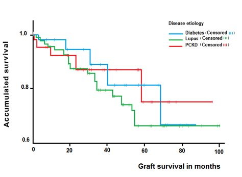 terminal report sle clinical outcomes of kidney transplants on patients with