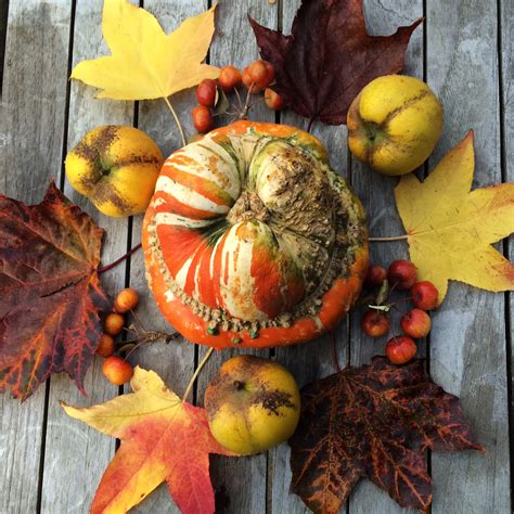 fall decorations uk how to create simple stylish autumn decorations from the