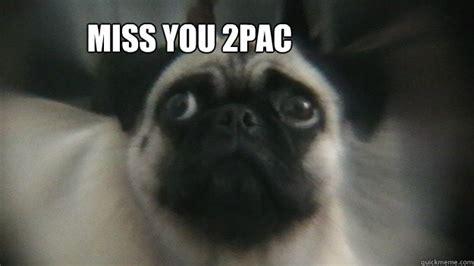 Sad Pug Meme - sad pug memes quickmeme