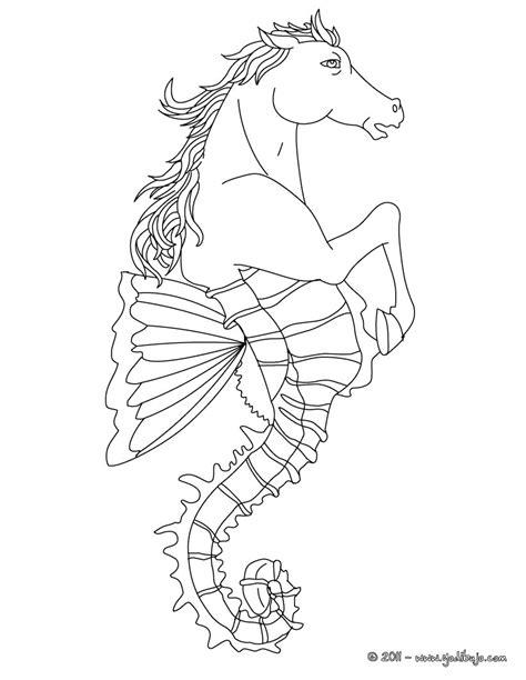 imagenes mitologicas gratis dibujos para colorear hipoco criatura mitad caballo y