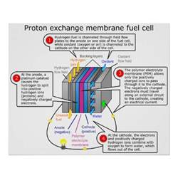 Proton Fuel Cell Proton Exchange Membrane Fuel Cell Diagram Poster Zazzle