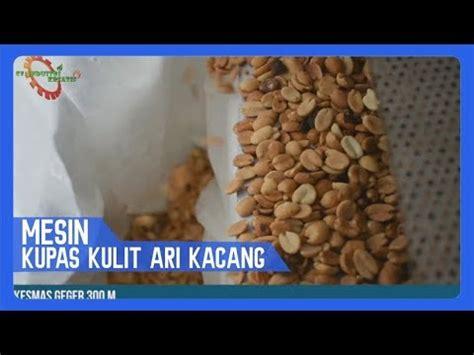 kacang tanah kupas ari 1kg mesin kupas kulit ari kacang tanah