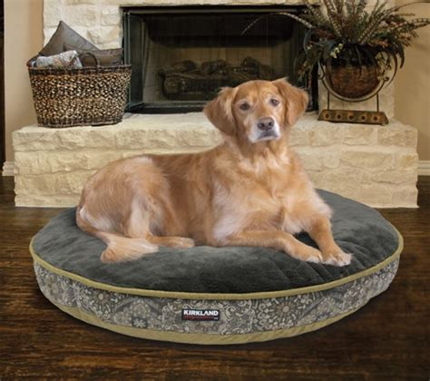 dog bed costco charming costco bolster dog bed costco bolster dog bed