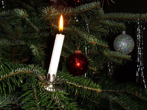 Critter Sitter S Blog December 2010 Candle Lights For Trees