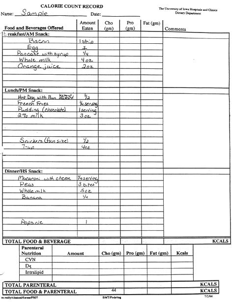 15 best images of daily food intake worksheet food