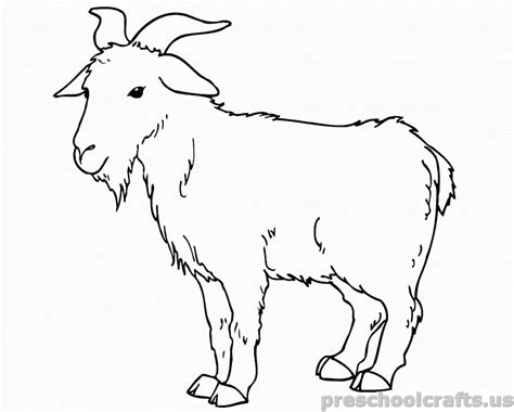 free printable coloring pages for free printable goat coloring pages for preschooler