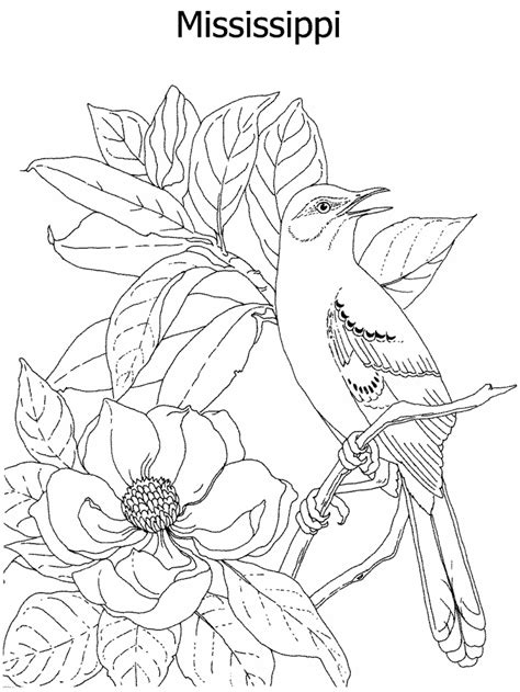 intricate floral coloring pages free coloring pages of intricate flowers