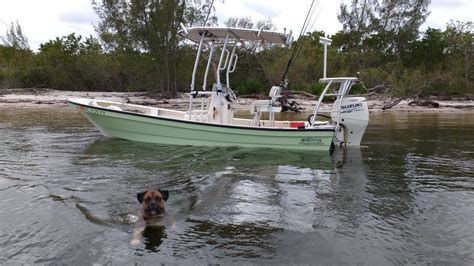 panga boat for sale panga boats for sale boats