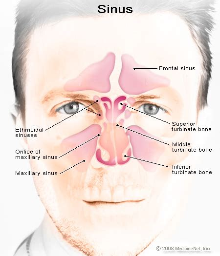 how long do spinal headaches last after c section how to get rid of a sinus headache symptoms relief