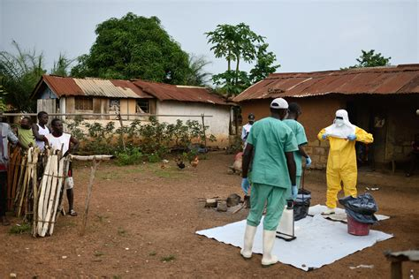 conservative tree house prominent tip of spear ebola hospitals closing to reduce