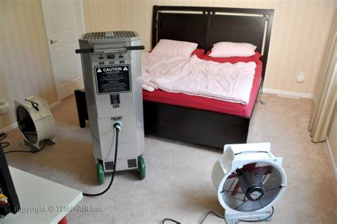 heat treatment bed bugs heat treatment bedbugdogsandheat