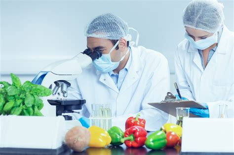 food technology the of food technology in improving flavour