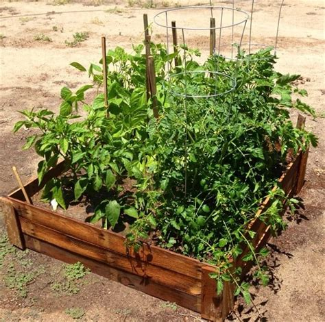 pallet garden bed enjoy the creativity with pallet garden bed pallet