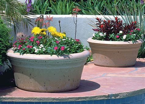 extra large planters     classy cold season