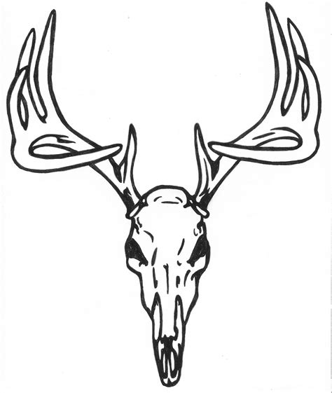 deer skull tattoo deer skull sle