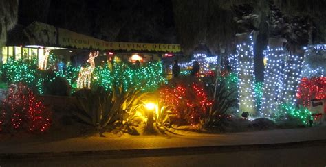 wild lights at the living desert six saturdays and a sunday