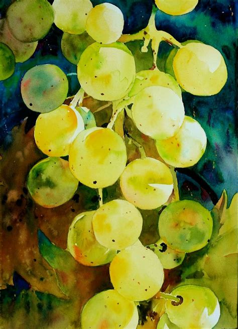 watercolor grapes tutorial 209 best images about grapes on pinterest vitis vinifera