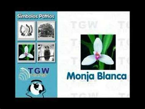 imagenes simbolos nacionales de centroamerica simbolos patrios de guatemala youtube