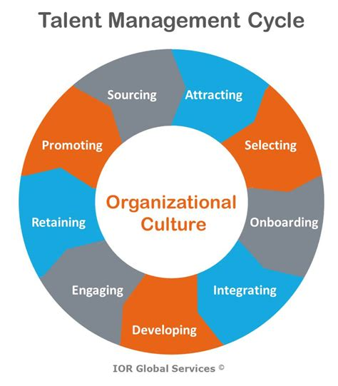 starting a talent development program what works in talent development books global leadership development the talent management cycle