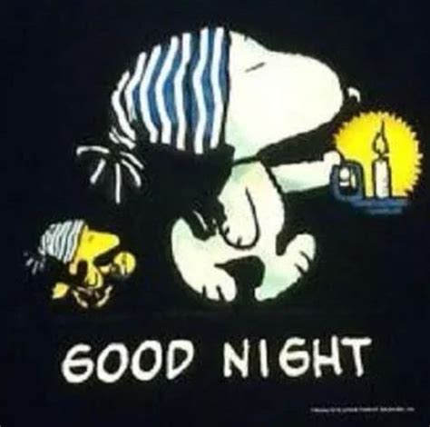 imagenes de buenas noches snoopy good night snoopy and woodstock snoopy pinterest