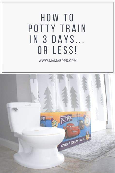 how to potty a how to potty in 3 days or less mamabops