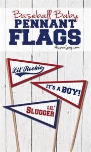 baseball baby pennant flags aspen jay