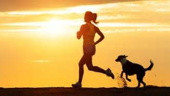 Great Home Design Blogs best dog breeds for running companions mnn mother