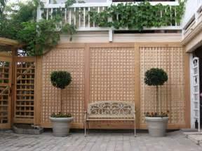 trellis design plans garden trellis ideas to mesmerize your garden look home