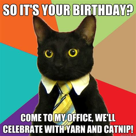 Office Cat Meme - so it s your birthday cat meme cat planet cat planet