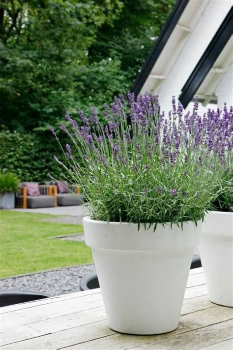 modern plant pots 37 modern planters to make your outdoors stylish digsdigs
