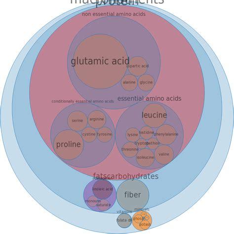 protein enriched foods protein foods protein enriched foods
