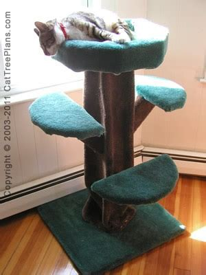 cat tree house plans free free cat tree house plans home photo style