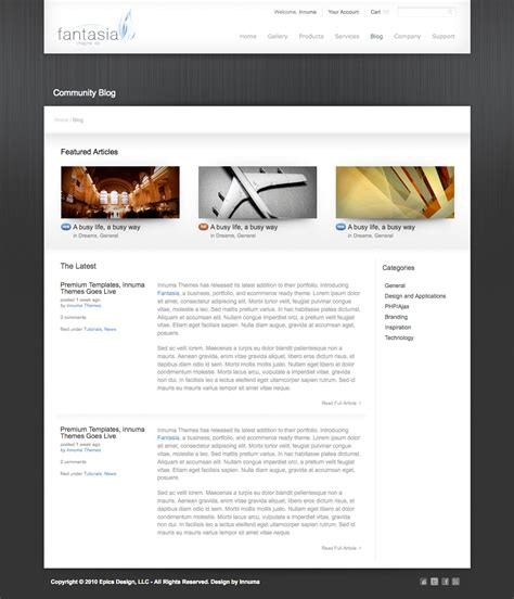 business portfolio template fantasia business and portfolio template by innuma