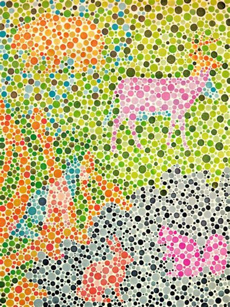 are animals color blind 25 best ideas about color blindness test on