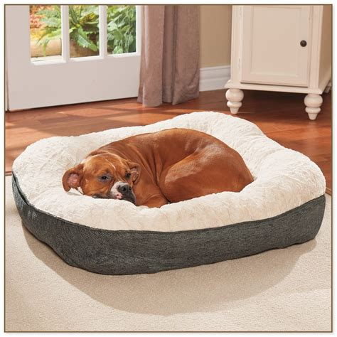 dr fosters dog beds drs foster and smith beds 28 images fosters and smith