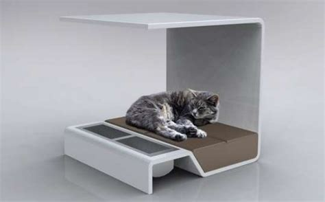 modern cat canopy pet beds per your feline friend with the modern