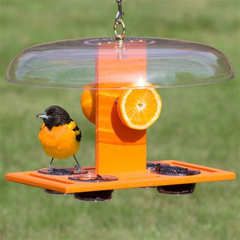 duncraft com deluxe oriole jelly feeder
