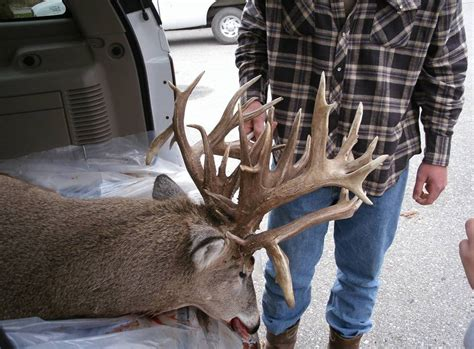 Free Records Nebraska Possible Nebraska State Record Whitetail