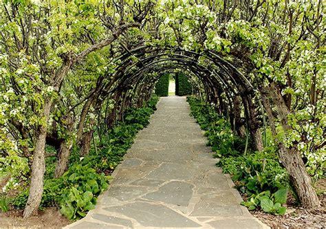 define botanical garden home carrickhill sa gov au