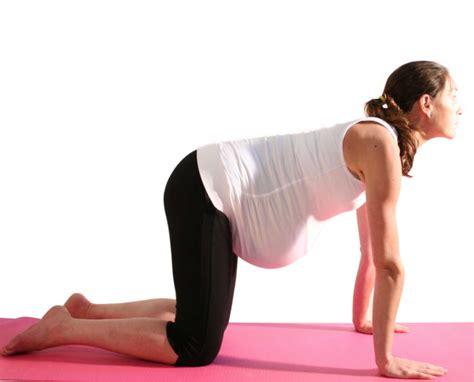tutorial yoga ibu hamil 5 gerakan yoga terbaik agar ibu hamil tetap sehat warong