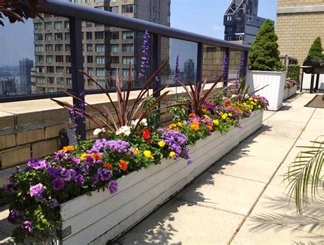 Flower View Garden Apartments Flower View Garden Apartments Suite In Flower Garden Location Apartments For Rent In San