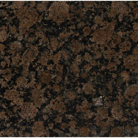ms international baltic brown 12 in x 12 in polished granite floor and wall tile 10 sq ft