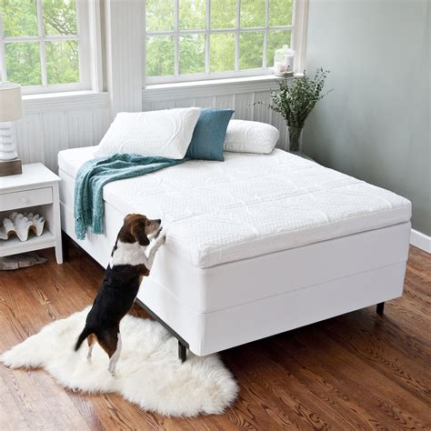 most comfortable bed topper most comfortable mattress topper 12 what makes latex the