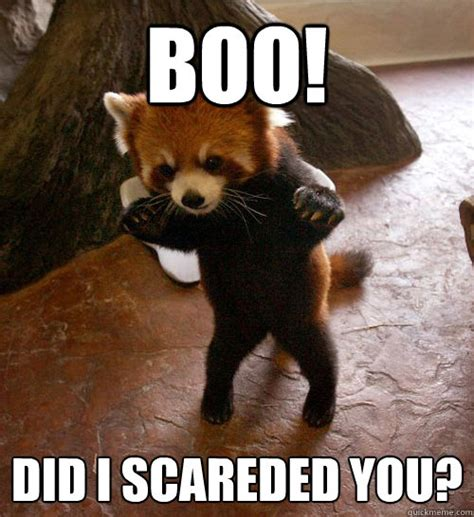 Boo Meme - boo did i scareded you boo quickmeme