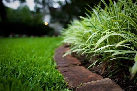 lawn care what are reasonable lawn care service prices