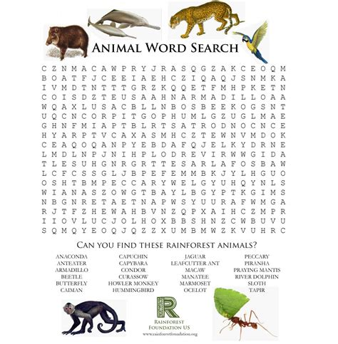 jungle animal word search activity printables rainforest games and worksheet activities save the