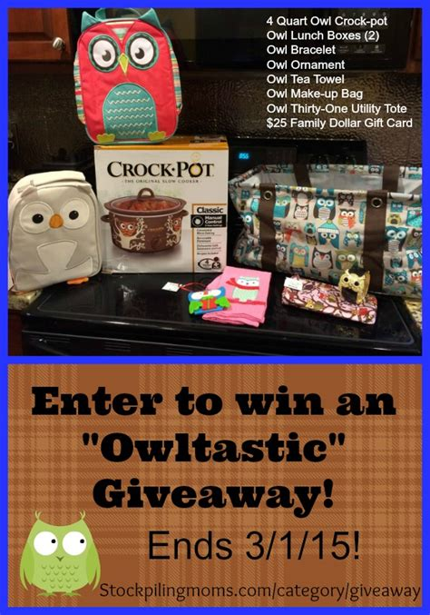 Crock Pot Giveaway - owl crock pot and owltastic giveaway closed